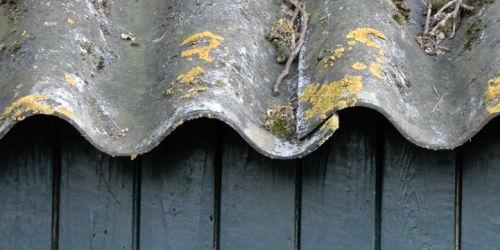 Week van de Asbestvrije Schuur
