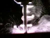 Meterkast levert asbestgevaar op voor doe-het-zelver